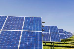 Un champ de panneaux solaires, l'une des filières des énergies renouvelables