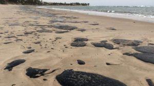 Des galettes de pétrole sur l'une des plages touchées par la pollution au Brésil